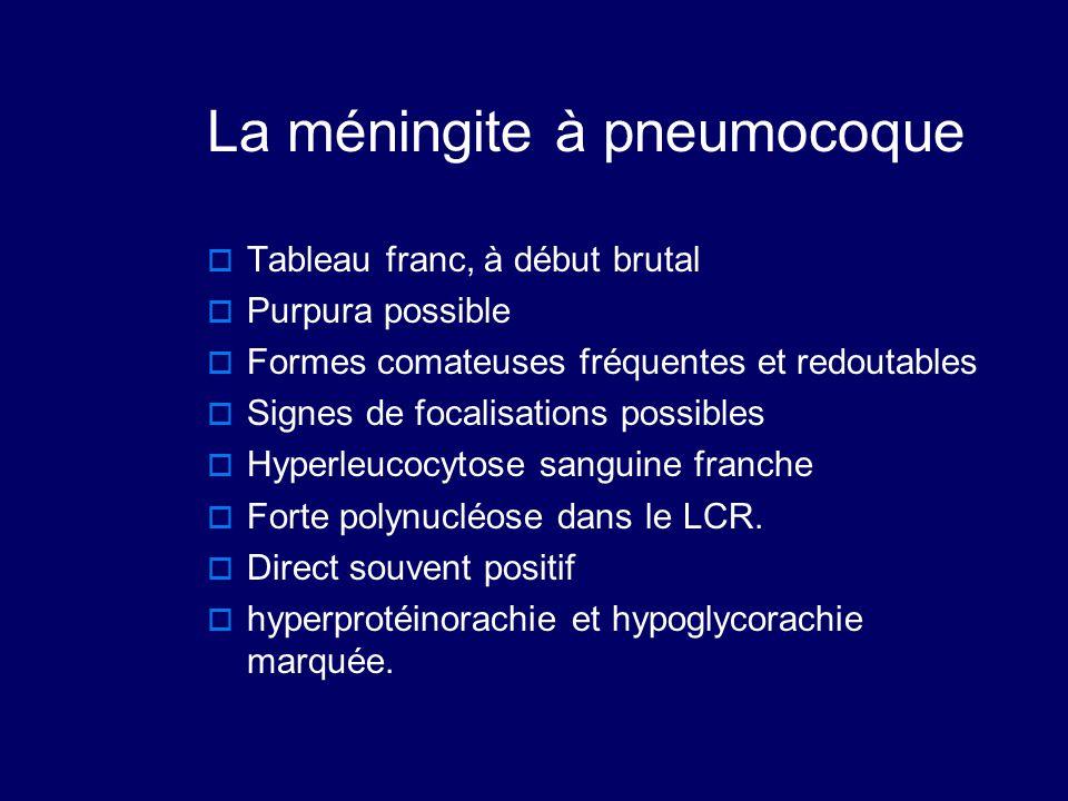 La méningite à pneumocoque