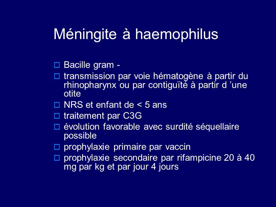 Méningite à haemophilus