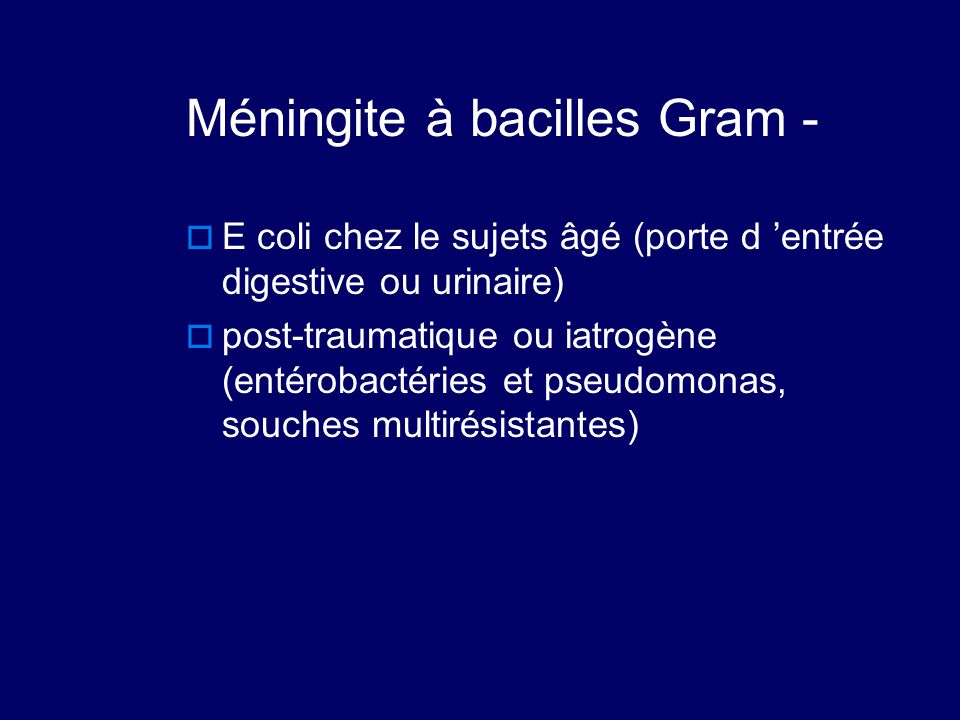 Méningite à bacilles Gram -