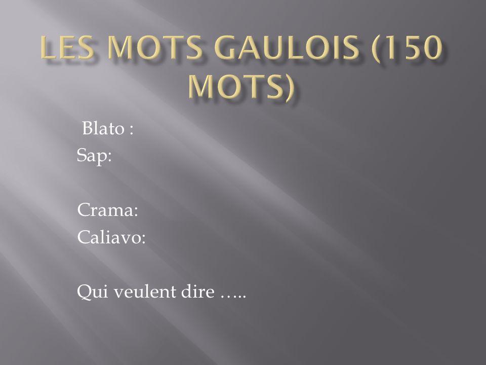 Les mots gaulois (150 mots)