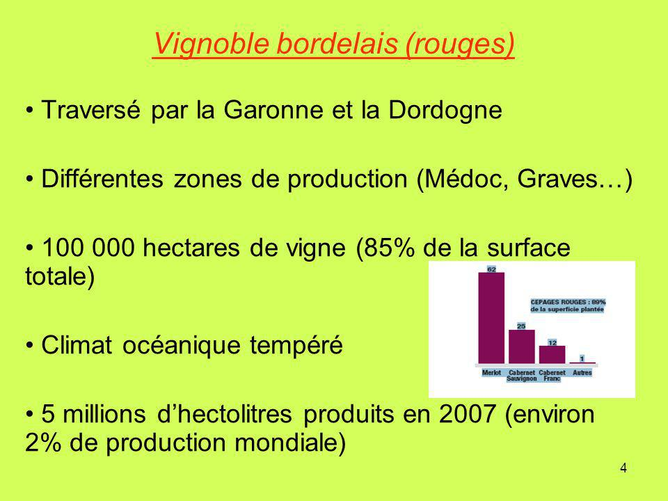 Vignoble bordelais (rouges)