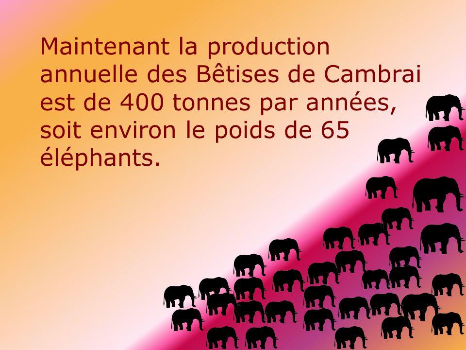 Maintenant la production annuelle des Bêtises de Cambrai est de 400 tonnes par années, soit environ le poids de 65 éléphants.