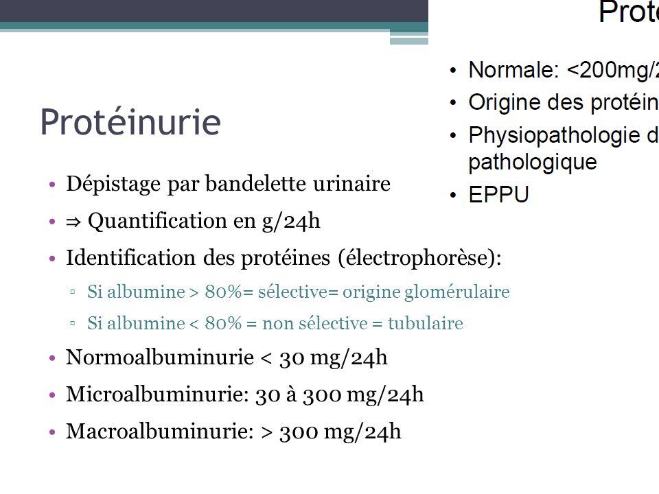 Protéinurie Dépistage par bandelette urinaire