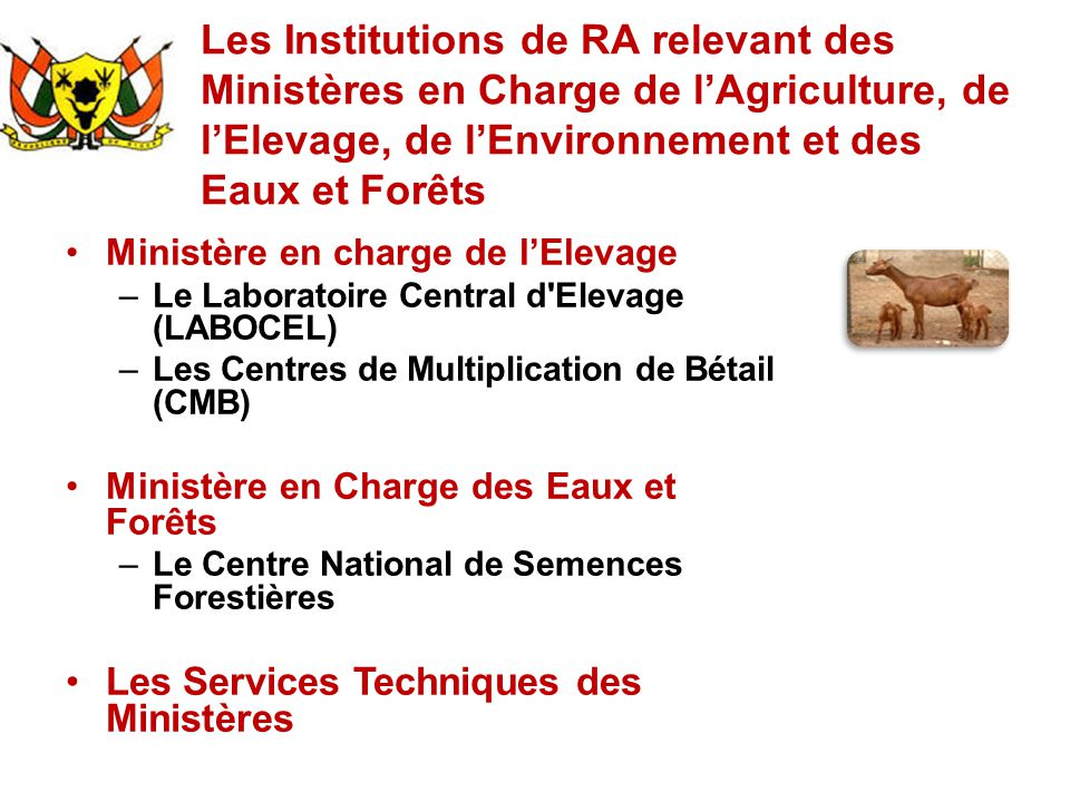 Les Institutions de RA relevant des Ministères en Charge de l'Agriculture, de l'Elevage, de l'Environnement et des Eaux et Forêts