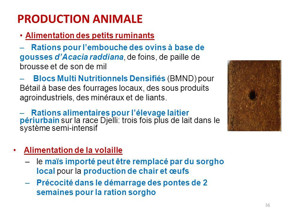 PRODUCTION ANIMALE Alimentation des petits ruminants