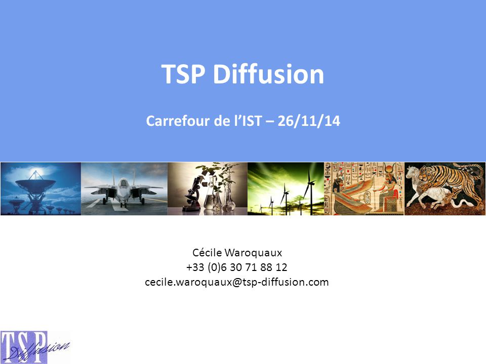 TSP Diffusion Carrefour de l'IST – 26/11/14 Cécile Waroquaux
