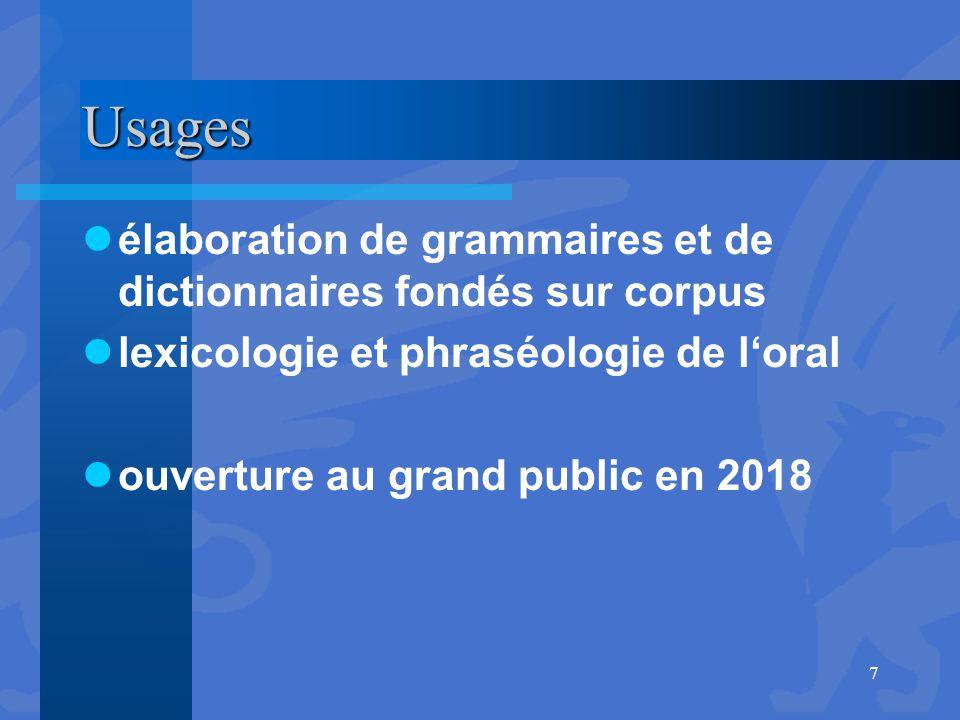 Usages élaboration de grammaires et de dictionnaires fondés sur corpus