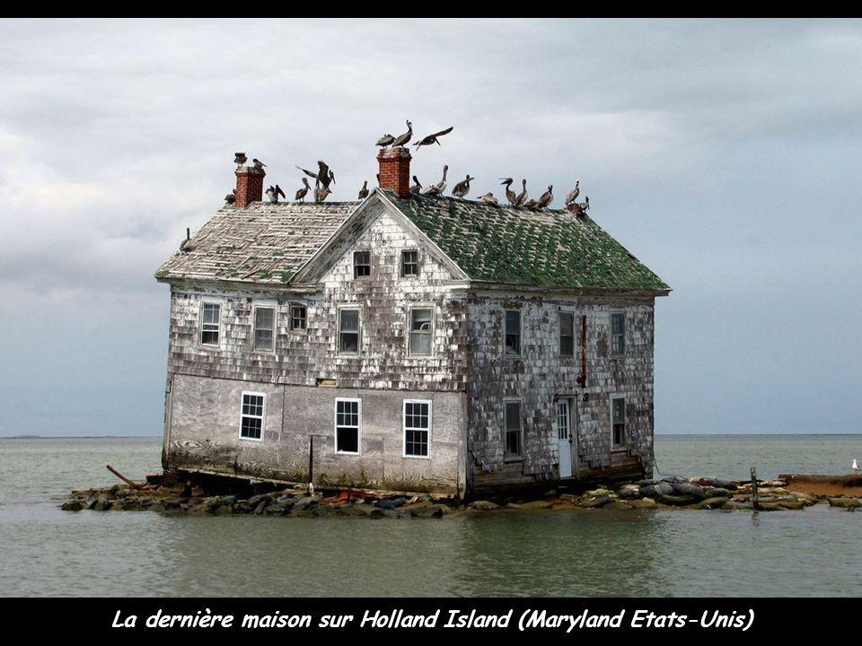 La dernière maison sur Holland Island (Maryland Etats-Unis)