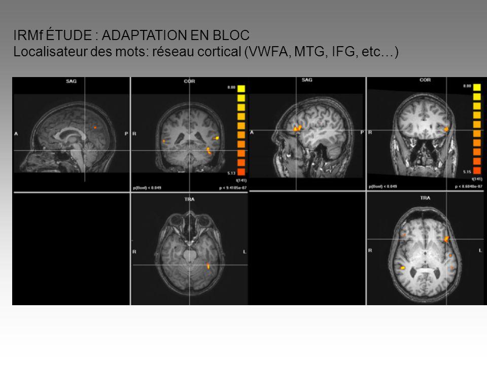 IRMf ÉTUDE : ADAPTATION EN BLOC