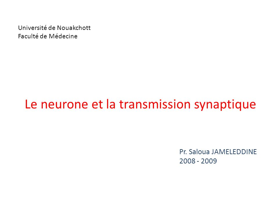 Le neurone et la transmission synaptique