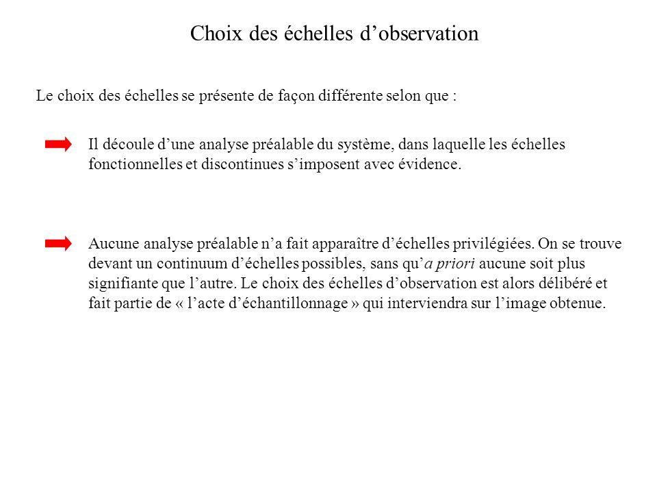 Choix des échelles d'observation