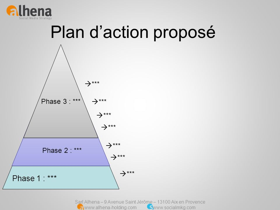 Plan d'action proposé Phase 1 : *** *** Phase 3 : *** *** *** ***
