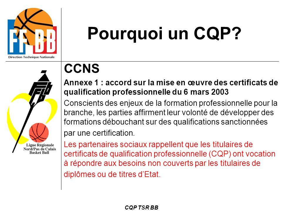 Pourquoi un CQP CCNS. Annexe 1 : accord sur la mise en œuvre des certificats de qualification professionnelle du 6 mars 2003.