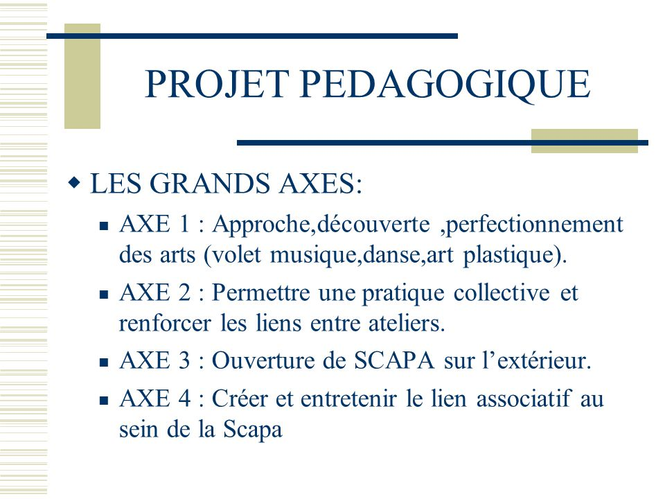 PROJET PEDAGOGIQUE LES GRANDS AXES: