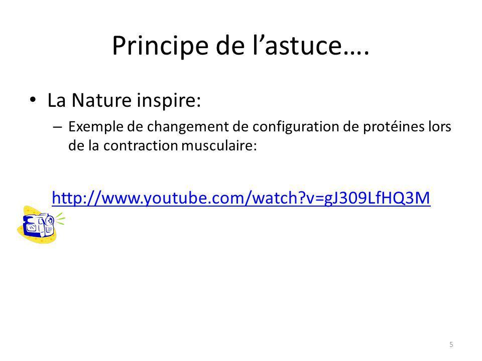 Principe de l'astuce…. La Nature inspire: