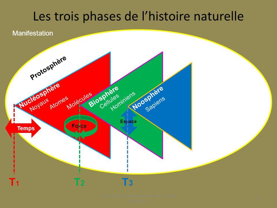 Les trois phases de l'histoire naturelle