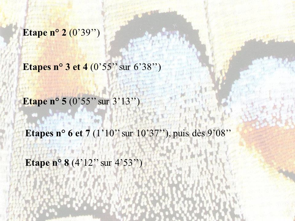 Etape n° 2 (0'39'') Etapes n° 3 et 4 (0'55'' sur 6'38'') Etape n° 5 (0'55'' sur 3'13'') Etapes n° 6 et 7 (1'10'' sur 10'37''), puis dès 9'08''