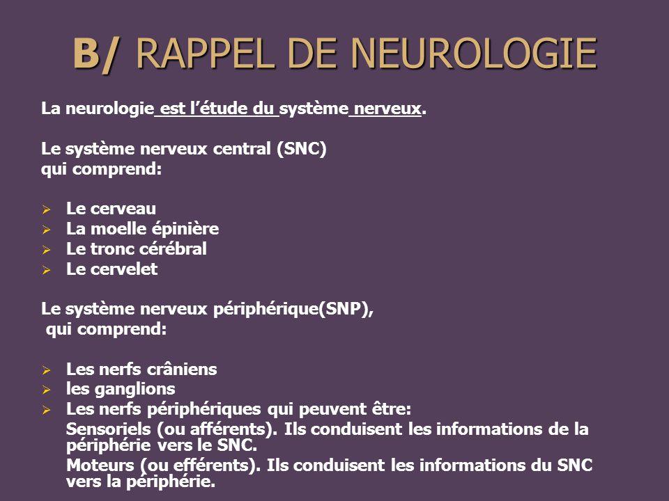 B/ RAPPEL DE NEUROLOGIE