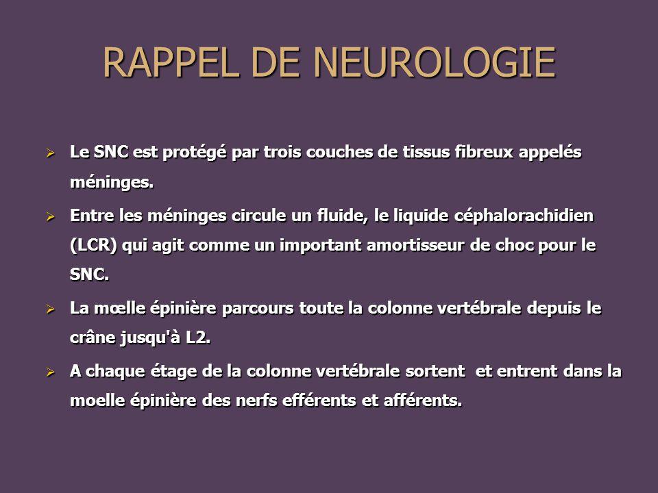 RAPPEL DE NEUROLOGIE Le SNC est protégé par trois couches de tissus fibreux appelés méninges.