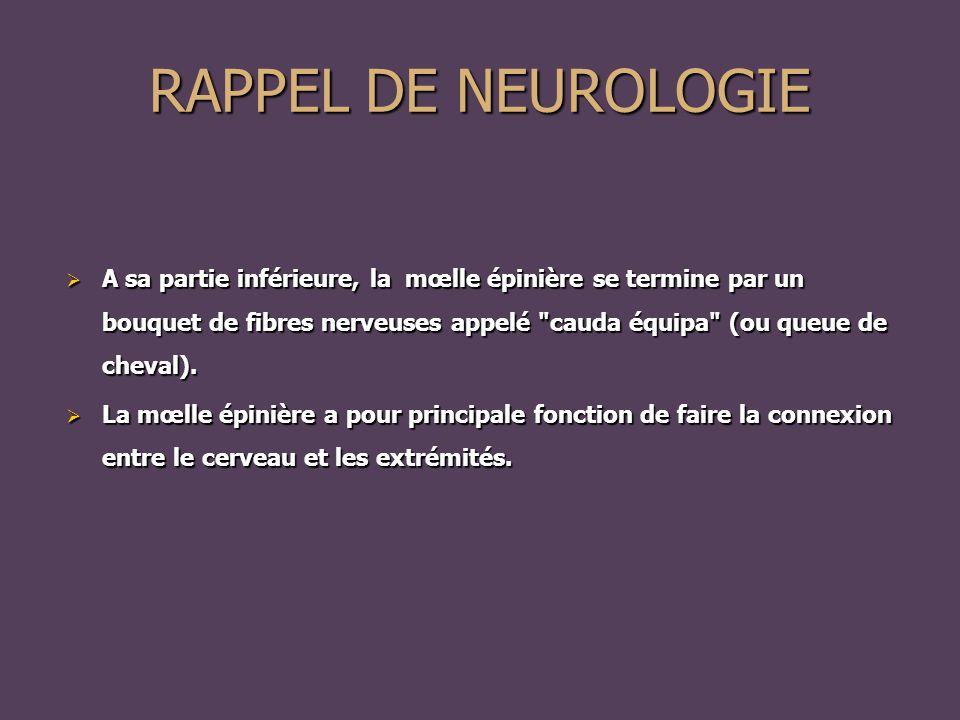 RAPPEL DE NEUROLOGIE