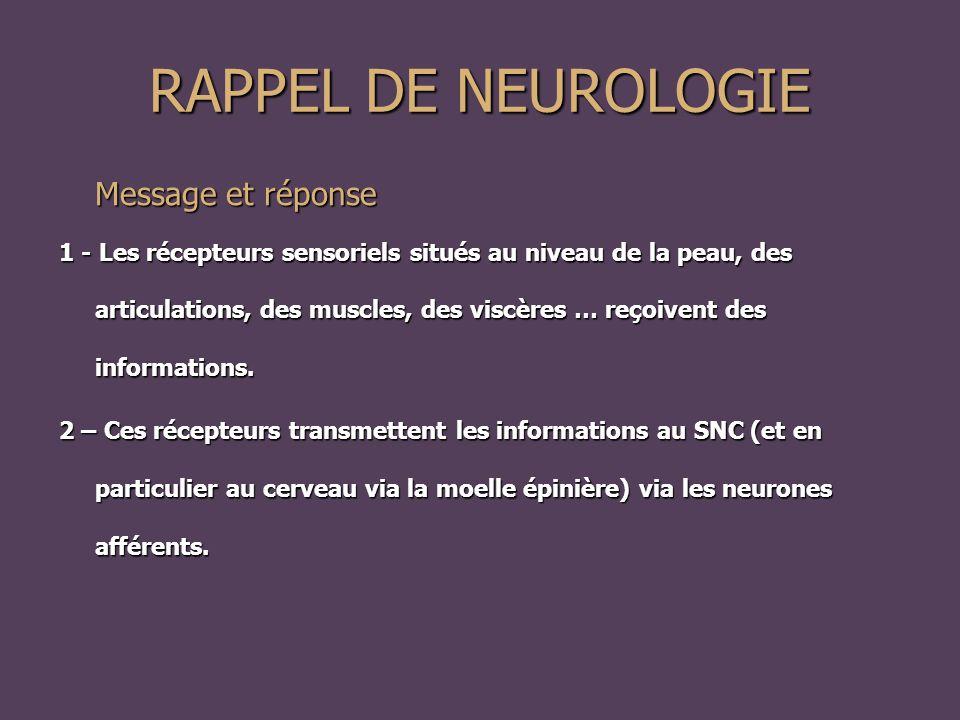 RAPPEL DE NEUROLOGIE Message et réponse