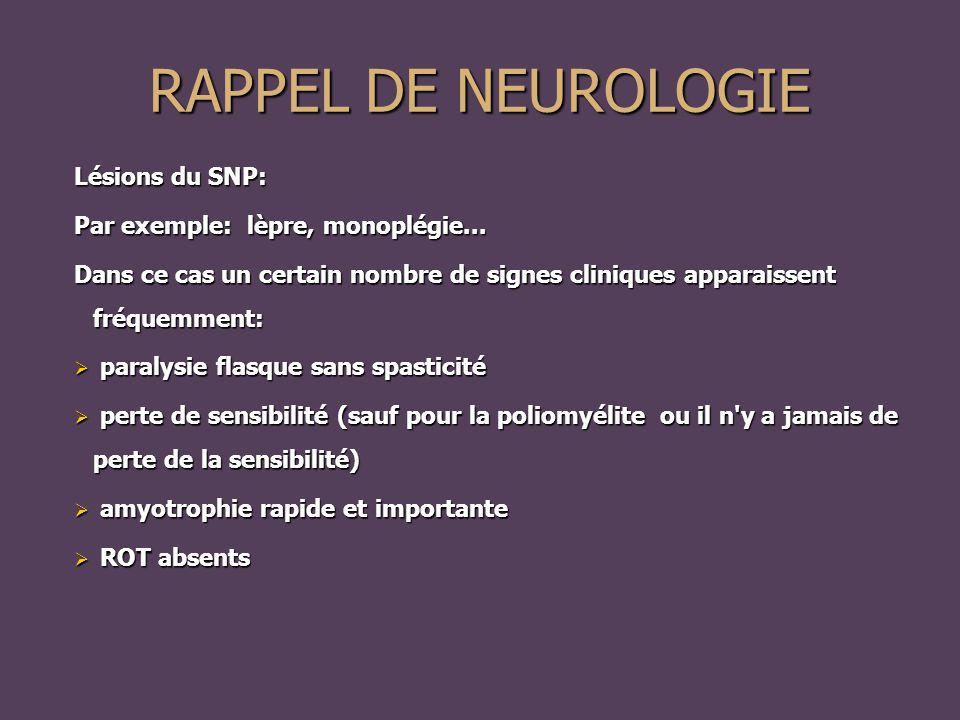 RAPPEL DE NEUROLOGIE Lésions du SNP: Par exemple: lèpre, monoplégie...