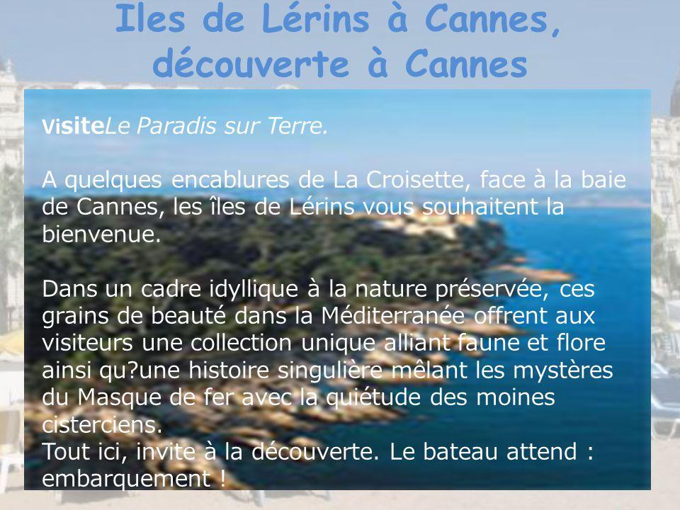 Iles de Lérins à Cannes, découverte à Cannes