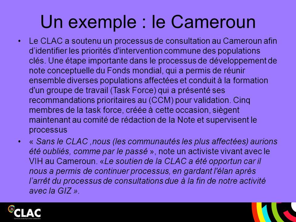 Un exemple : le Cameroun