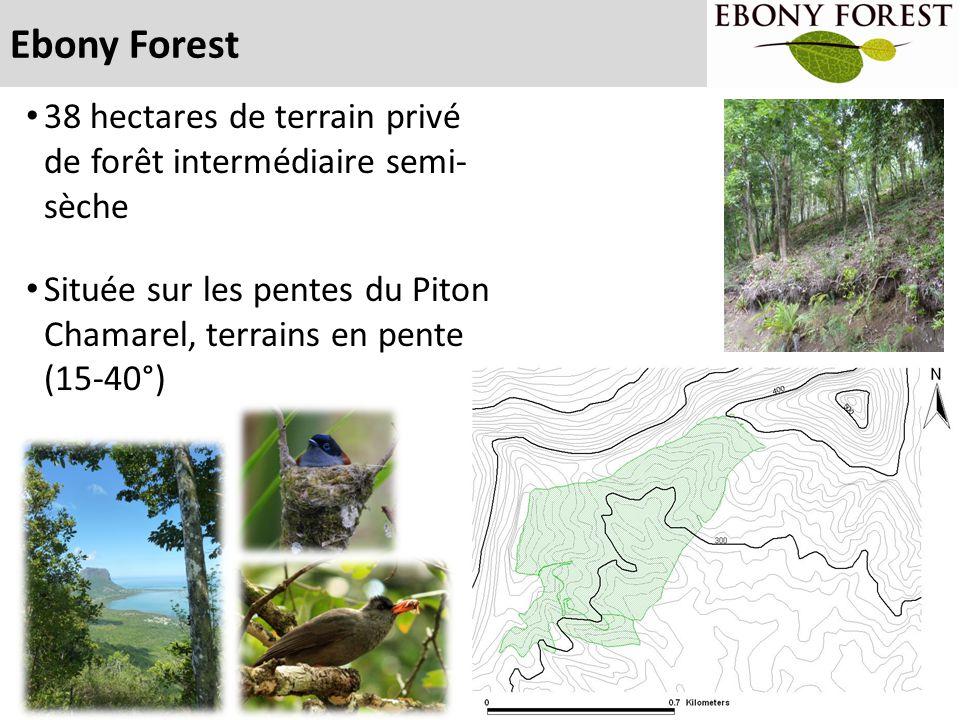 Ebony Forest 38 hectares de terrain privé de forêt intermédiaire semi- sèche.