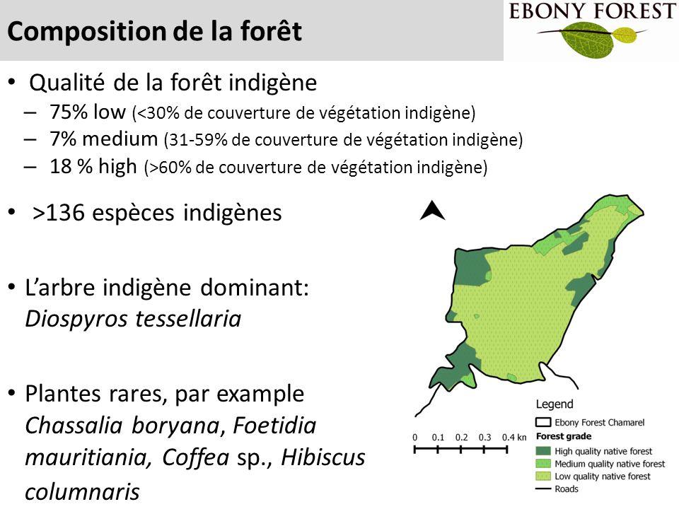 Composition de la forêt