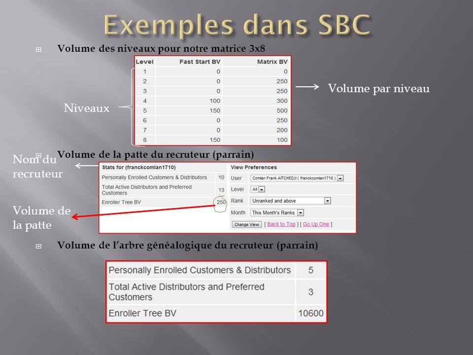 Exemples dans SBC Volume par niveau Niveaux Nom du recruteur