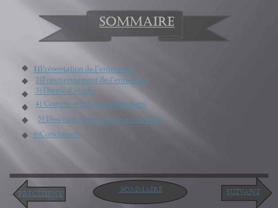 SOMMAIRE 1)Présentation de l'entreprise: