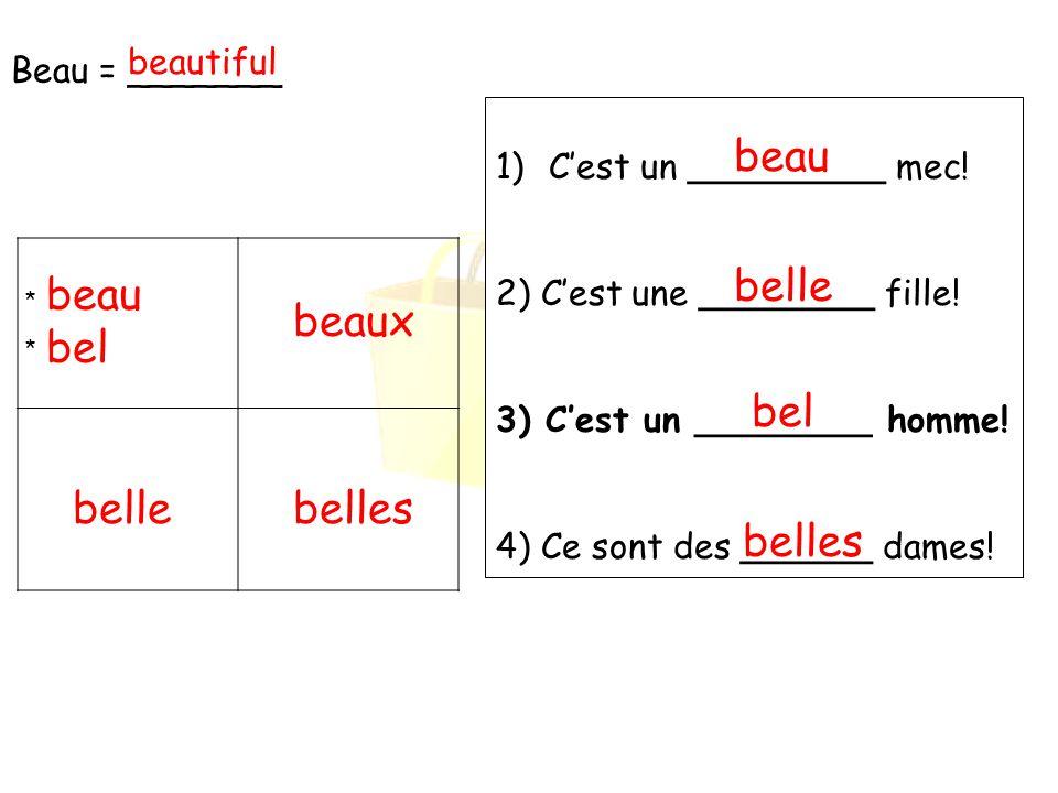 beau belle beau beaux bel bel belle belles belles Beau = _______