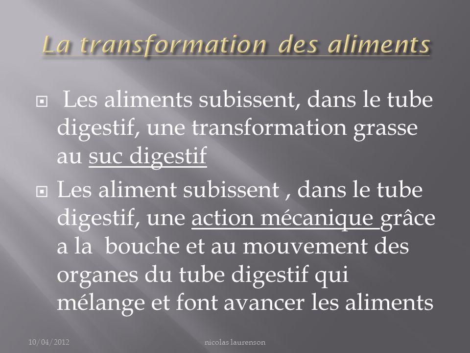 La transformation des aliments