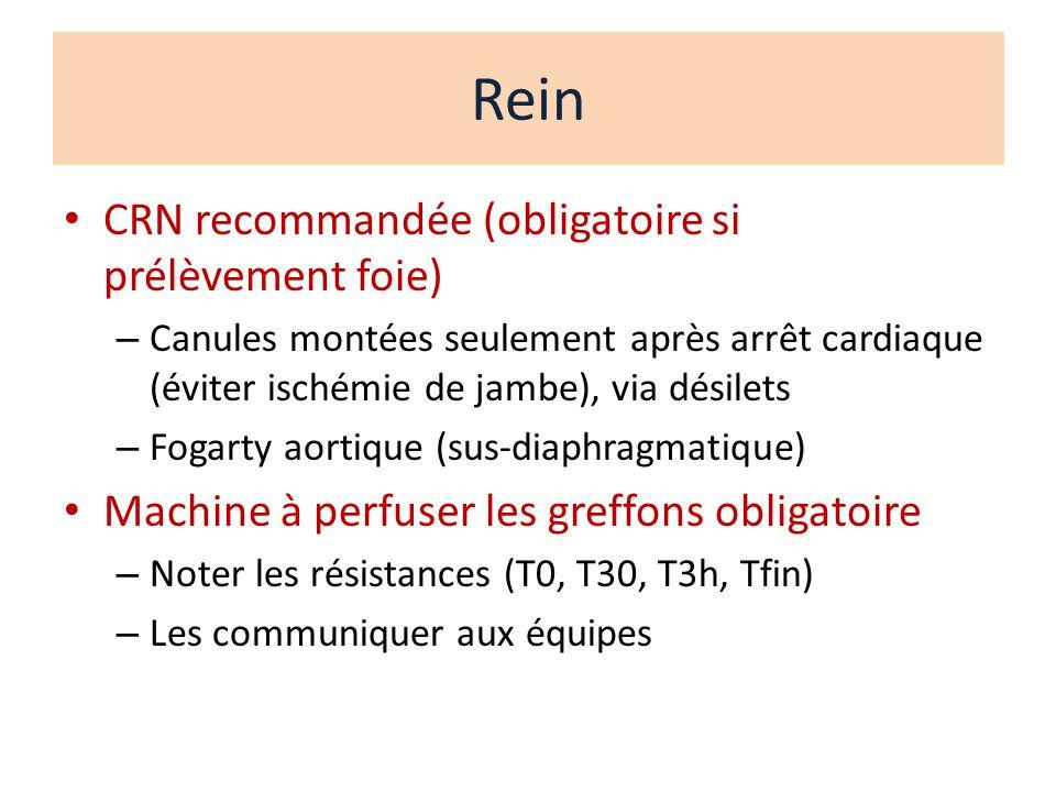 Rein CRN recommandée (obligatoire si prélèvement foie)