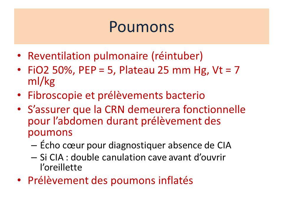 Poumons Reventilation pulmonaire (réintuber)