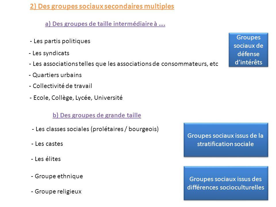2) Des groupes sociaux secondaires multiples