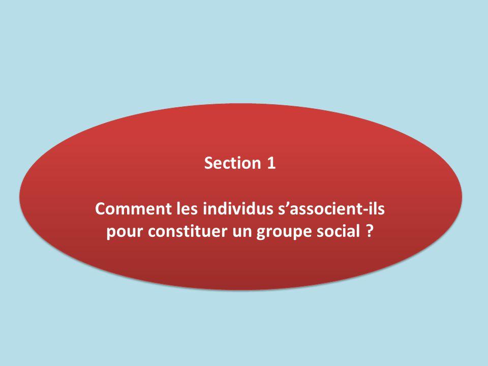 Section 1 Comment les individus s'associent-ils pour constituer un groupe social