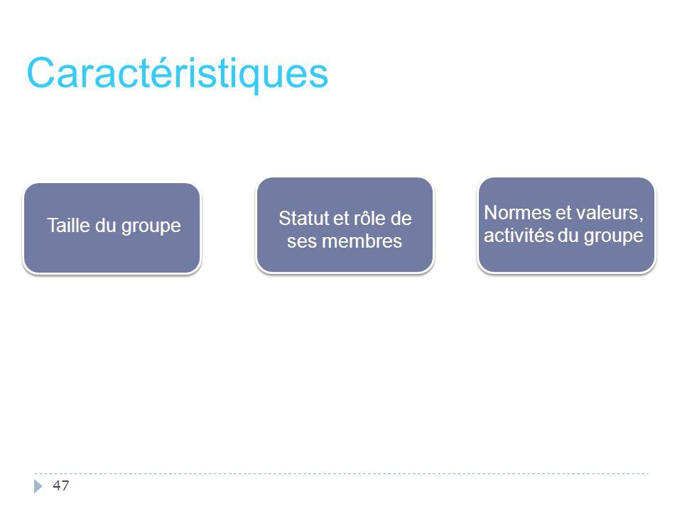 Caractéristiques Normes et valeurs, activités du groupe
