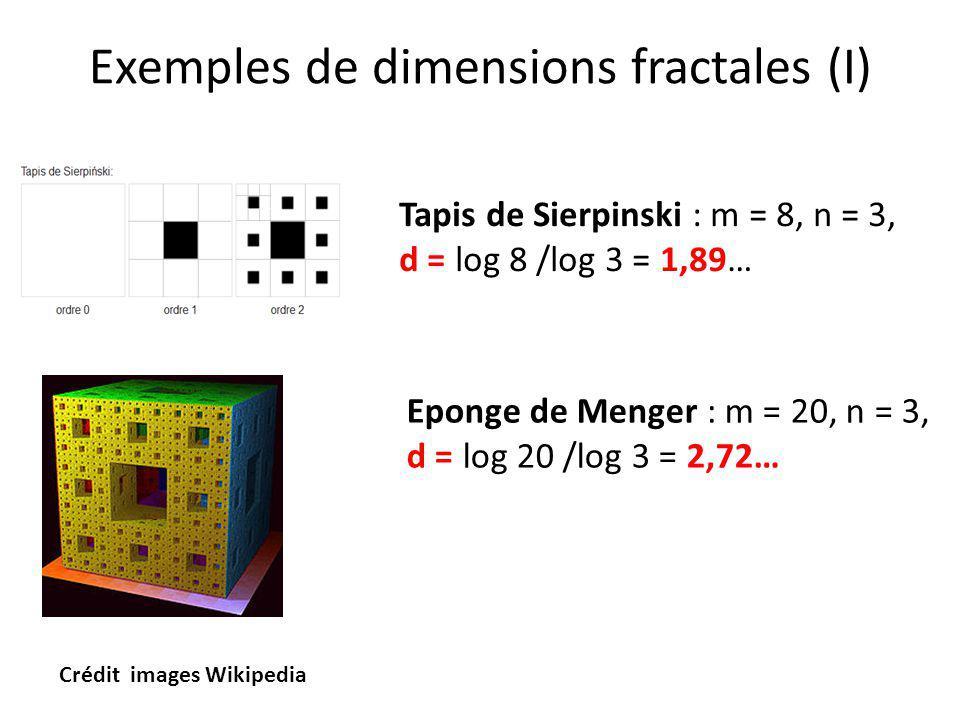 Exemples de dimensions fractales (I)