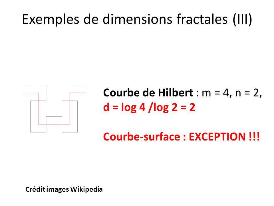 Exemples de dimensions fractales (III)