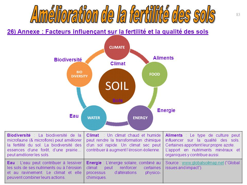 Amélioration de la fertilité des sols