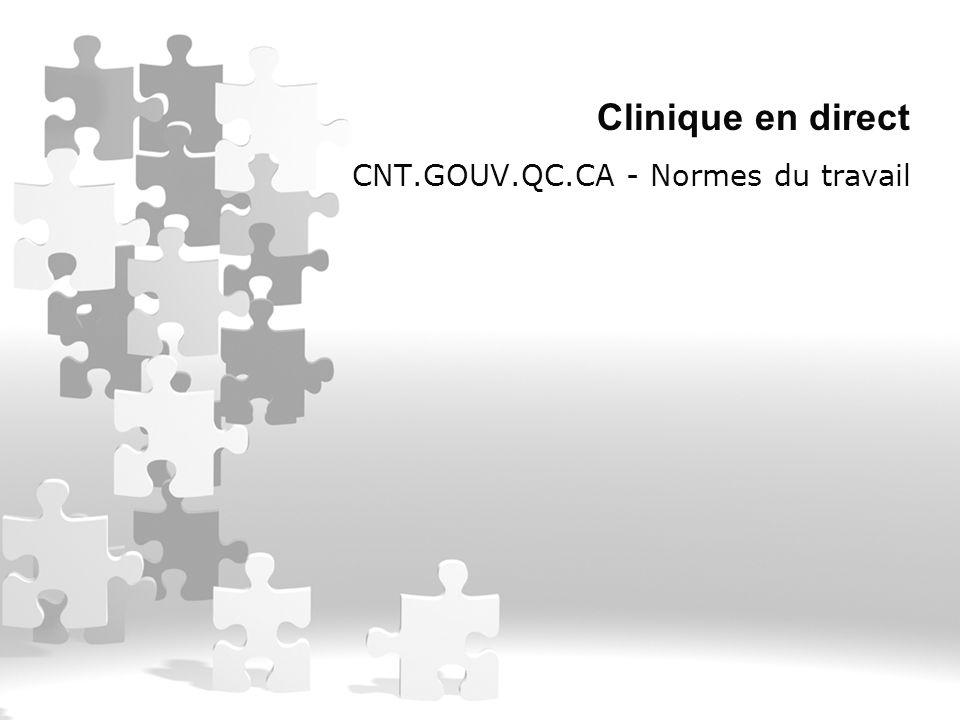 CNT.GOUV.QC.CA - Normes du travail