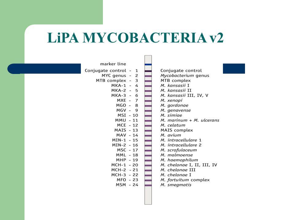 LiPA MYCOBACTERIA v2