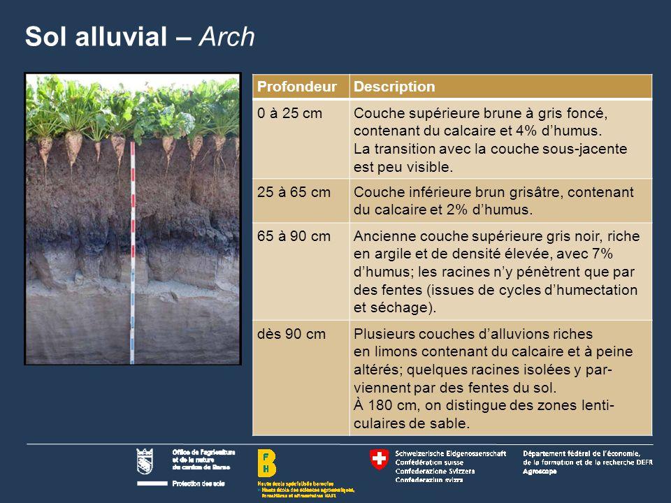 Sol alluvial – Arch Profondeur Description 0 à 25 cm
