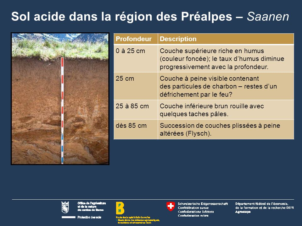 Sol acide dans la région des Préalpes – Saanen