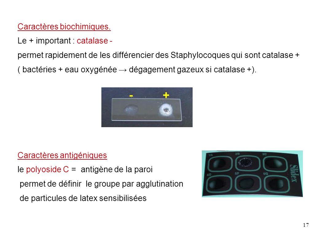 Caractères biochimiques.