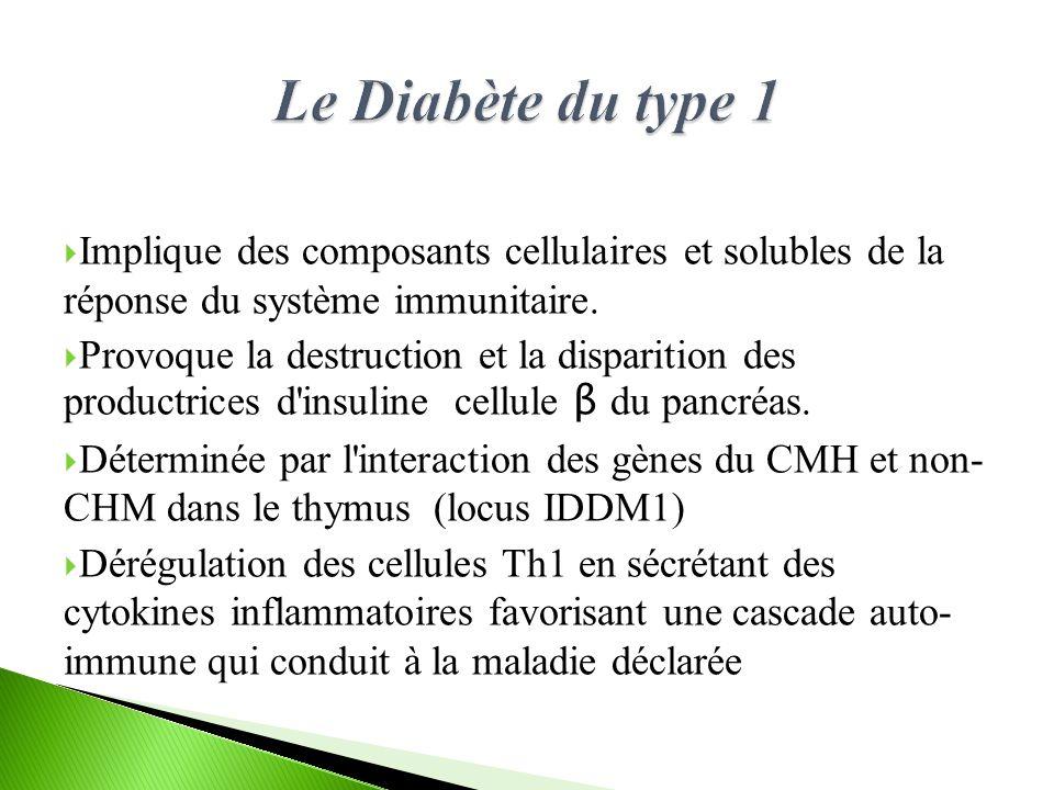 Le Diabète du type 1 Implique des composants cellulaires et solubles de la réponse du système immunitaire.