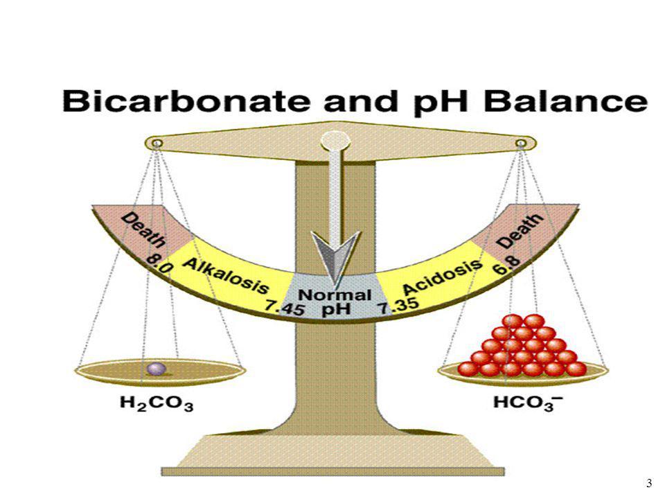Acidose et alcalose physiologique