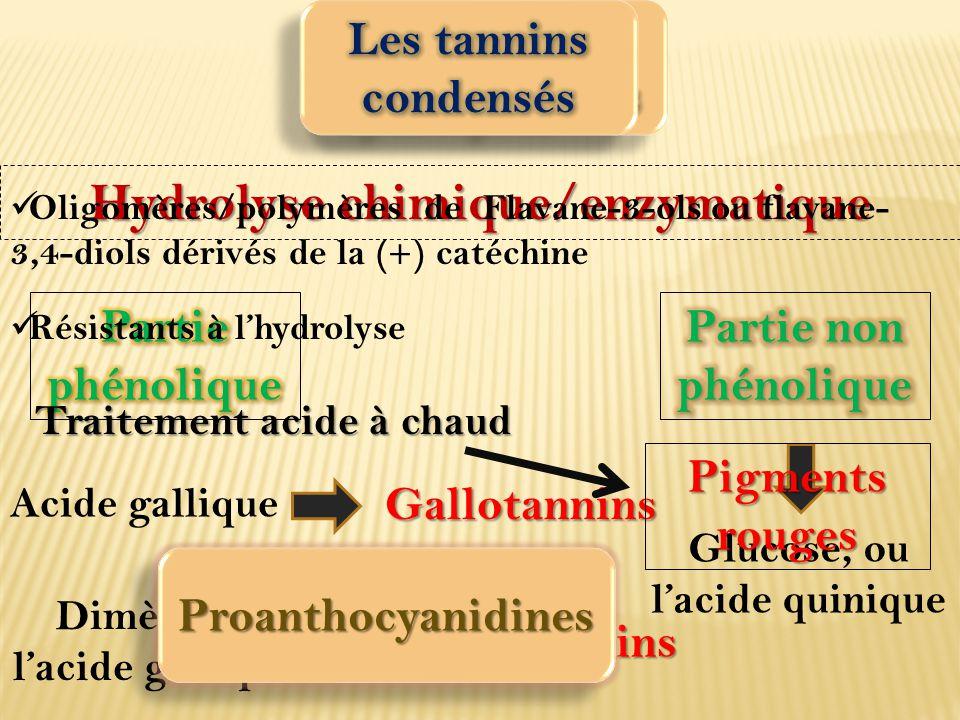 Hydrolyse chimique/enzymatique